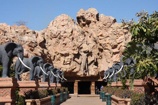 Image result for south africa sun city