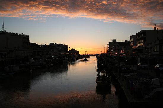 Palavas-les-Flots, France: Port de Palavas