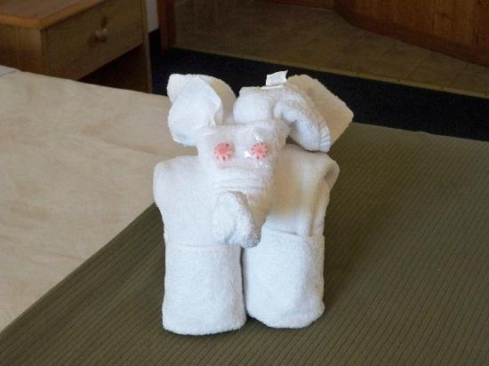 Motel 62: Towel art left by housekeeping