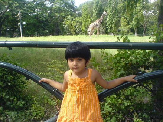 Mysore Dasprakash : Changing Mysore
