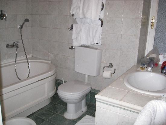 Hotel Villa Azalee : bathroom