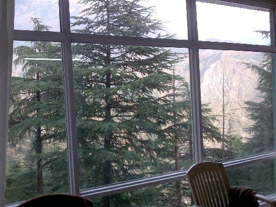 Hunted Hill Guest House: View from the Room