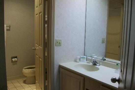 Homewood Suites Syracuse/Liverpool: bathroom/vanity area