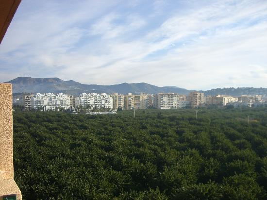 هوتل فيكتوريا بلايا: vista de almuñecar desde habitacion