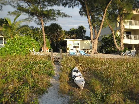 Indian Rocks Beach, Floride : Your path from the sea - Gulf Cottage is what you can see - the main building is out of sight am