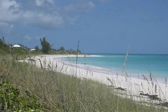Sky Beach Club: beach