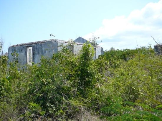 Cat Island: There are hundreds of stone houses all over the island - ruins from the 1700s & 1800s