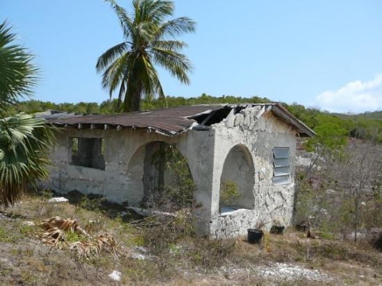 Cat Adası Resmi