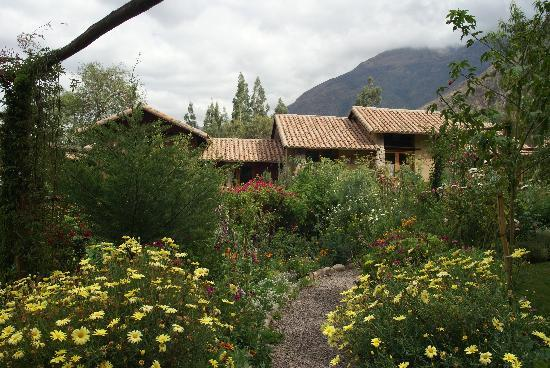 Casa Colibri eco-Lodge : Le jardin