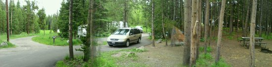Bridge Bay Campground: Behind my camp, near the back of the cul-de-sac of the A section