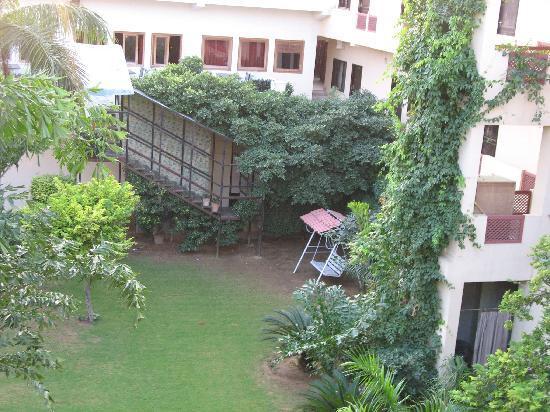 Hotel Palms: Garden inside