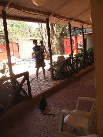 Hotel Kumar Plaza: Ambience
