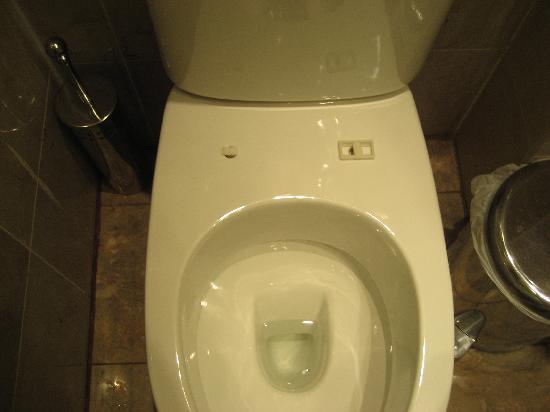 Hyde Park Suites Serviced Apartments: WC 3 estrellas!!!