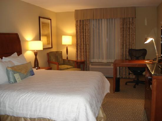 Hilton Garden Inn Atlanta West/Lithia Springs: King Room