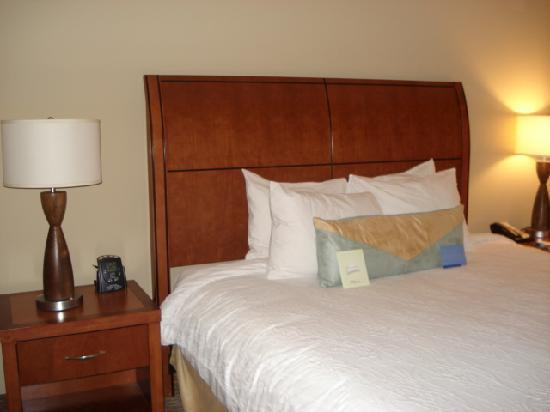 Hilton Garden Inn Atlanta West/Lithia Springs: King bed