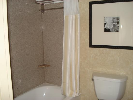 Hilton Garden Inn Atlanta West/Lithia Springs: Bathroom 1