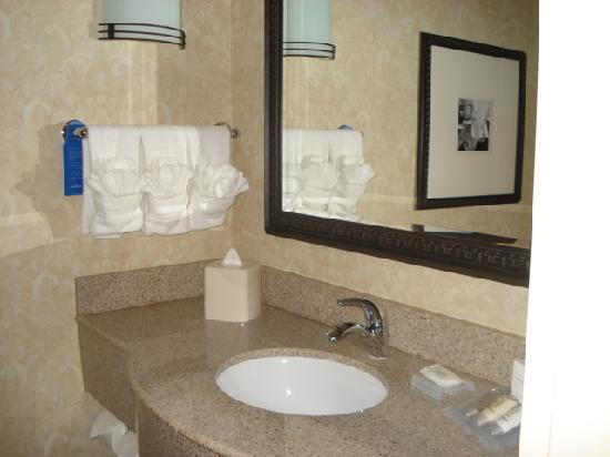 Hilton Garden Inn Atlanta West/Lithia Springs: Bathroom 2