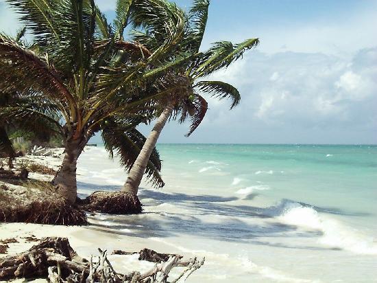 Pinar del Rio Province, Cuba: Cayo Levisa