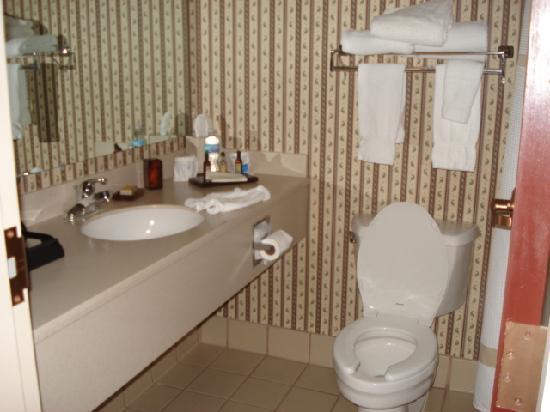 Cincinnati Airport Marriott: Bathroom