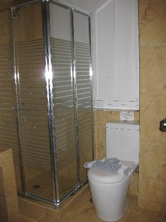 Athens Lotus Hotel: Shower and toilet