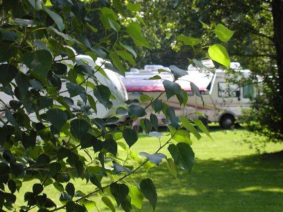 Cymbria Tent & Trailer Park: Cymbria RV sites