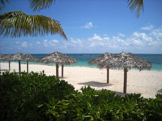 Coral Beach Hotel and Condos: gorgeous beach in front of the complex