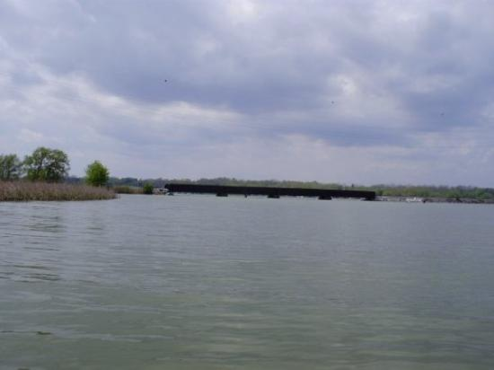 Сиракузы, Нью-Йорк: Cayuga Lake looking south