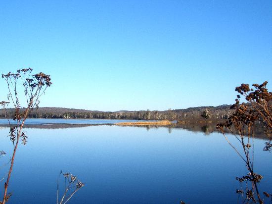Deer Mountain Lodge & Wilderness Resort : Androscoggin river