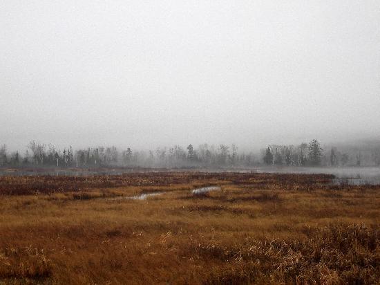 Deer Mountain Lodge & Wilderness Resort : Morning mist on NH White Mountain Rd