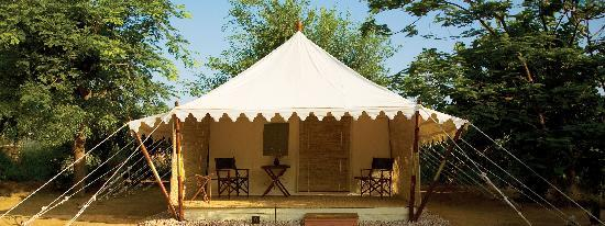 Sher Bagh: Luxury Tents