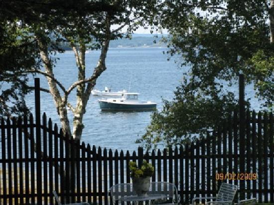 Islesboro, ME: fenced in private yard