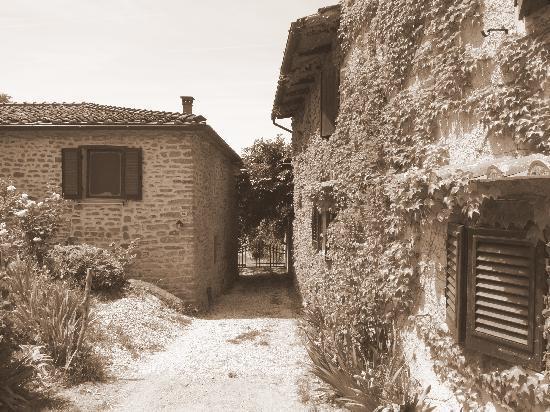 Vicchio, อิตาลี: Le Due Volpi