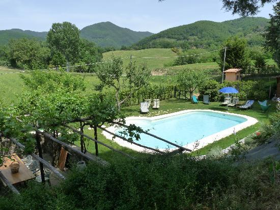 Vicchio, Italy: Le Due Volpi pool area