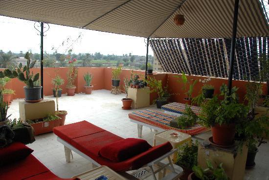 Mara House: rooftop garden