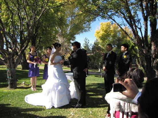Las Vegas Weddings At The Grove Ceremony Lovely