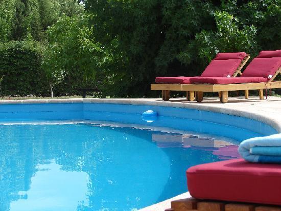 Le Terrada Suites: Pool