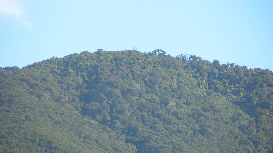 Hotel Mango Valley: POAS Mountain