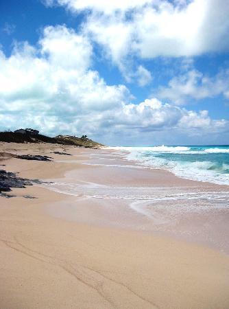 St Francis Resort: More beautiful beach.
