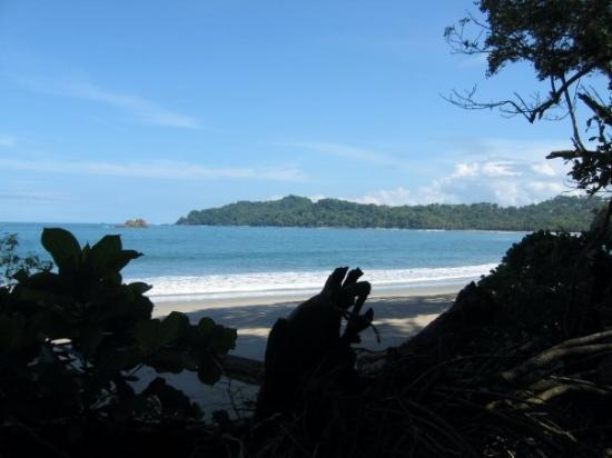 San José, Costa Rica: Beach in San Manuel National Park