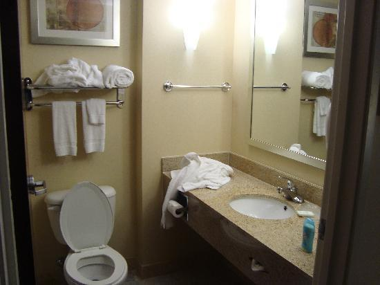 Comfort Suites Atlanta Airport : big bathroom
