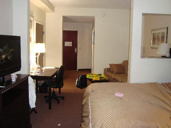 Comfort Suites Atlanta Airport : small living room area