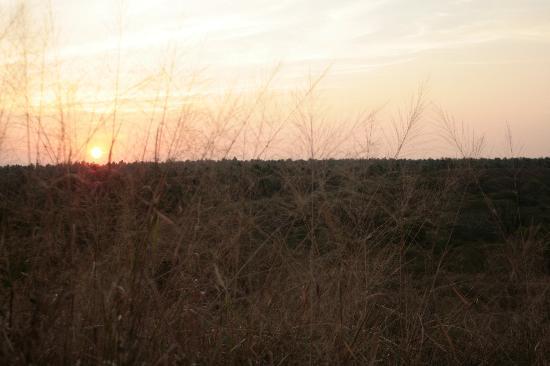 Playa Viva : sunset over PV