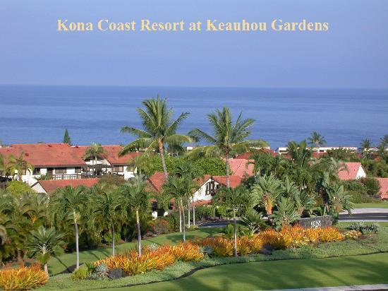 Kona Coast Resort Aloha Condos