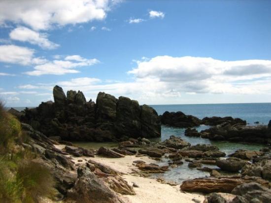 Papamoa, นิวซีแลนด์: rock pool at mount maunganui.