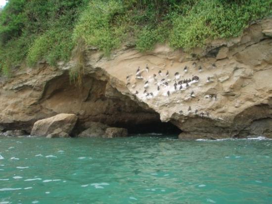Esmeraldas, Sùa-cuevas. Peñòn del Suicida.