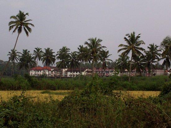 Lotus Beach Resort: view of suites from road