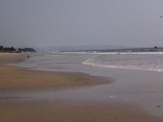 Lotus Beach Resort: benauli beach
