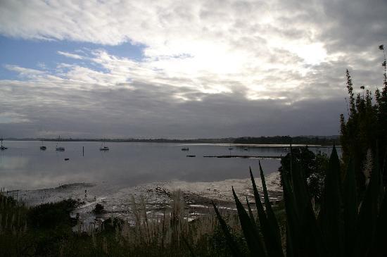 Coastline from Seafields