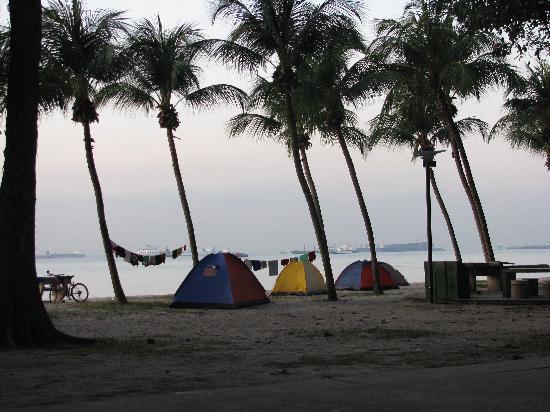 Goldkist Beach Resort : beach camping for the homeless