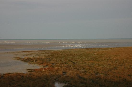 Le Bistrot De Vilde: Vue mer près de St Méloir